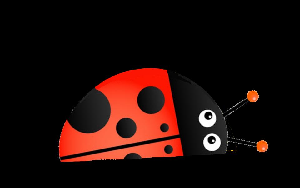 Bug Horizon